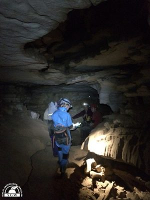 Collosal Cave - Mammoth Cave 1