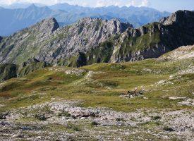 Wyprawa Bzyb 2018 – Poczuj ducha Kaukazu